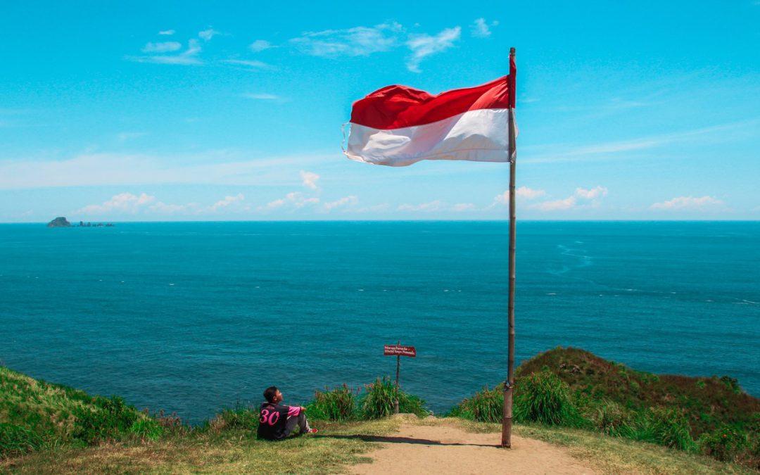 L'Indonésie veut faire des algues le nouveau plastique durable